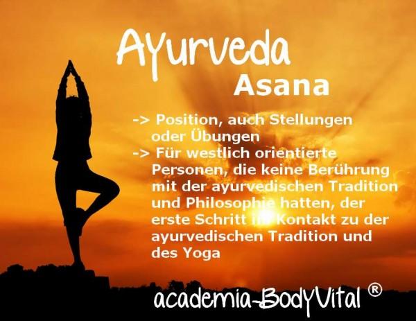 Yoga für Alle Basiskurs