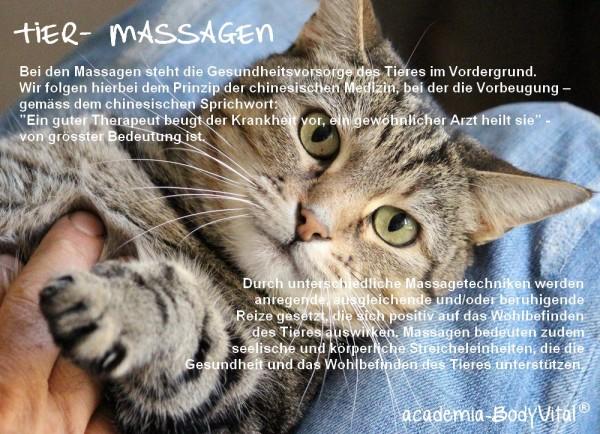 Tier- Massagen Basiskurs