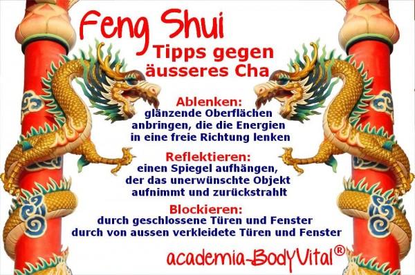 Feng Shui Seminar