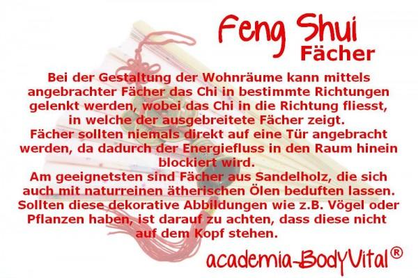 Feng Shui Basiskurs